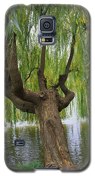 Just A Sip Galaxy S5 Case by Kathleen Scanlan
