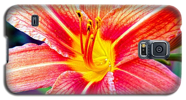 Just Another Day Lilly Galaxy S5 Case by Mayhem Mediums