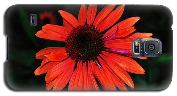 Galaxy S5 Case featuring the photograph Just As Pretty by Judy Wolinsky