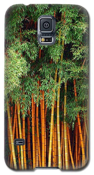 Just Bamboo Galaxy S5 Case by Sue Melvin