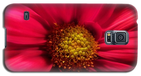 Just Because Flowers Galaxy S5 Case