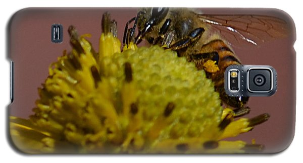 Just Bee Galaxy S5 Case
