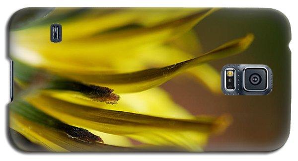 Just Dandy Galaxy S5 Case by Wendy Wilton