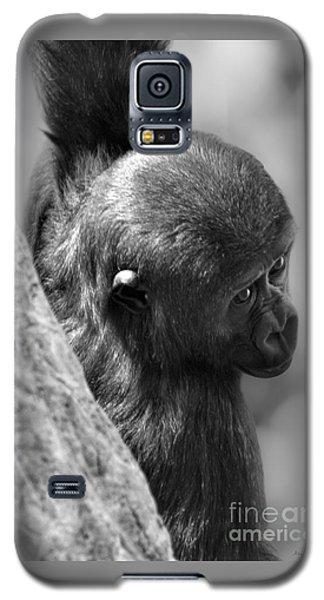 Just Hang'in  Galaxy S5 Case by Adam Olsen