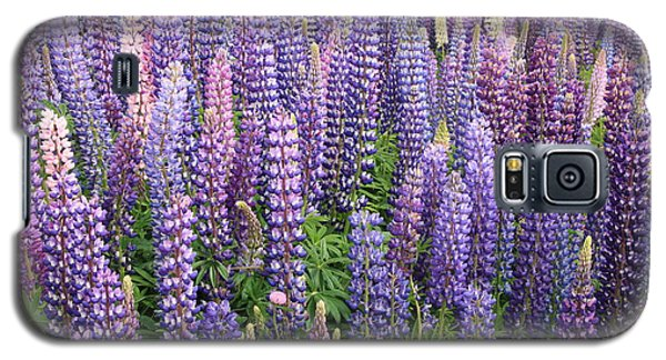 Galaxy S5 Case featuring the photograph Just Lupins by Nareeta Martin