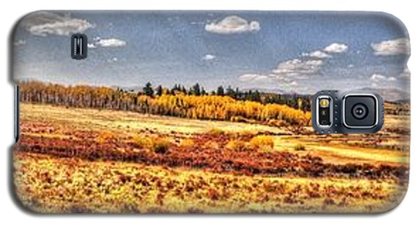 Galaxy S5 Case featuring the photograph Just North Of Fairplay Colorado by Lanita Williams