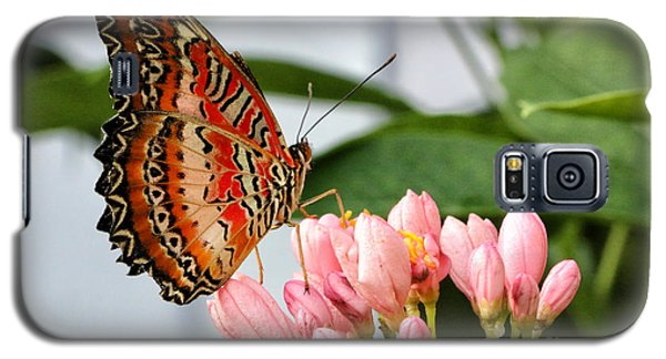 Just Pink Butterfly Galaxy S5 Case by Shari Nees