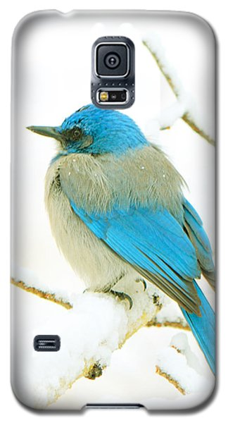 Just This Afternoon Galaxy S5 Case by Susanne Still