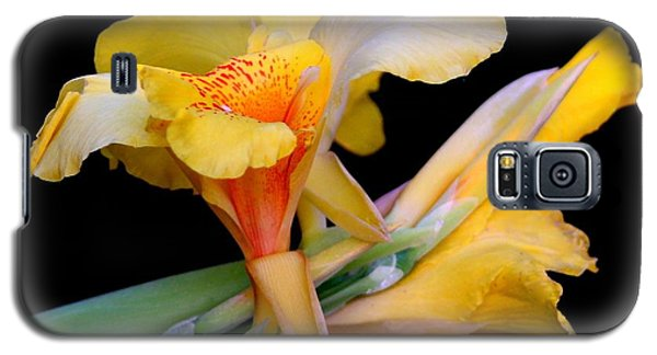 Galaxy S5 Case featuring the photograph Just Yellow by Geri Glavis