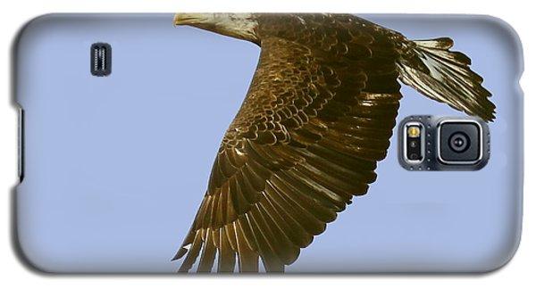 Galaxy S5 Case featuring the photograph Juvenile Eagle Flight by Myrna Bradshaw