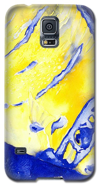 Juvenile Queen Angelfish Galaxy S5 Case