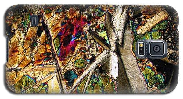 Jungle Dusk Galaxy S5 Case