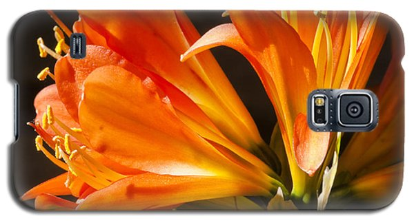 Kaffir Lily Glow Galaxy S5 Case