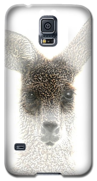 Galaxy S5 Case featuring the photograph Kangaroo by Holly Kempe