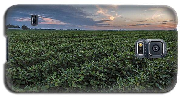 Kansas Soybeans Galaxy S5 Case