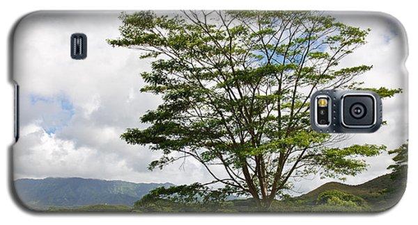 Galaxy S5 Case featuring the photograph Kauai Umbrella Tree by Shane Kelly