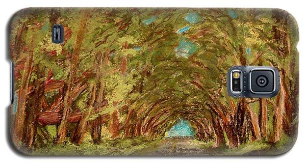 Kauiai Tunnel Of Trees Galaxy S5 Case by Joseph Hawkins