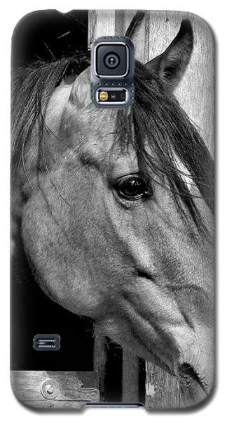 Kazzmeire Galaxy S5 Case