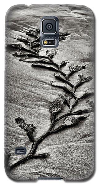 Kelp Snake Galaxy S5 Case