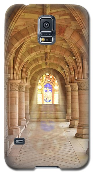 Kelso Abbey Stained Glass Galaxy S5 Case