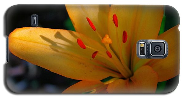 Galaxy S5 Case featuring the photograph Kenilworth Garden One by John S