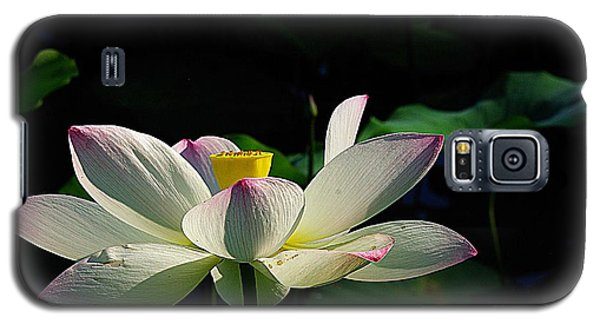 Galaxy S5 Case featuring the photograph Kenilworth Garden Two by John S