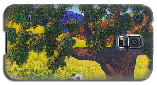 Kern County Cow Galaxy S5 Case by Katherine Young-Beck