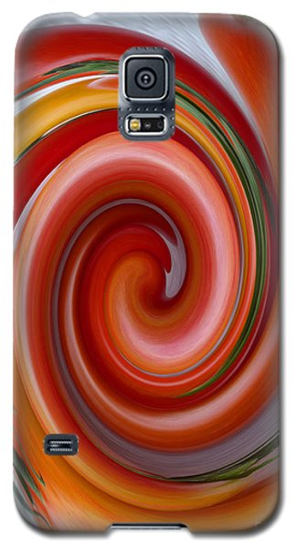 Ketchup To Be Galaxy S5 Case by Tina M Wenger