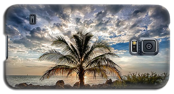 Key West Florida Lone Palm Tree  Galaxy S5 Case