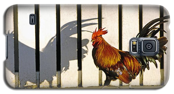 Key West Rooster Galaxy S5 Case