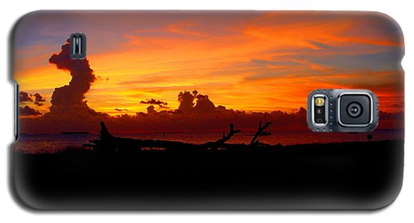 Key West Sun Set Galaxy S5 Case by Iconic Images Art Gallery David Pucciarelli