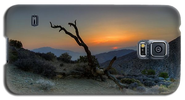 Keys View Sunset Galaxy S5 Case by Dave Files