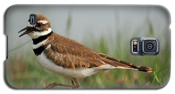 Galaxy S5 Case featuring the photograph Killdeer by Geraldine DeBoer