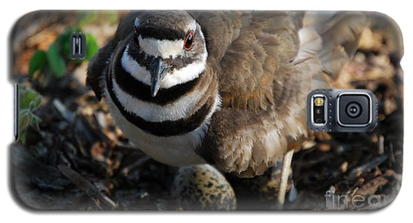 Killdeer Mom Galaxy S5 Case