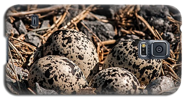 Killdeer Nest Galaxy S5 Case by Lara Ellis