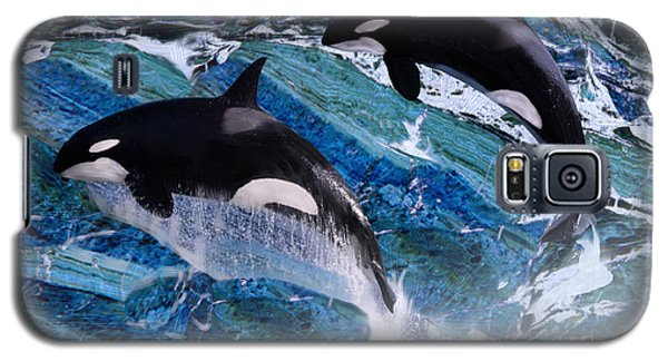 Wild Orca Whales Of Florida Galaxy S5 Case
