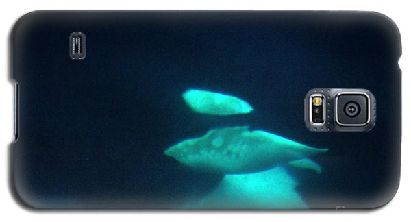 Galaxy S5 Case featuring the photograph Killer Whales Orcas Under Water  Off The San Juan Islands 1986 by California Views Mr Pat Hathaway Archives