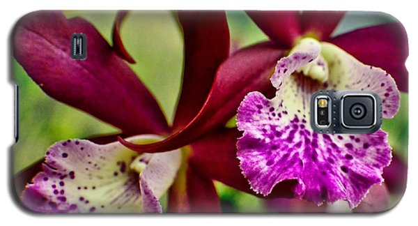 Kimball Orchids Galaxy S5 Case