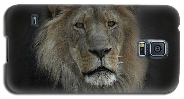 King Of Beasts Portrait Galaxy S5 Case