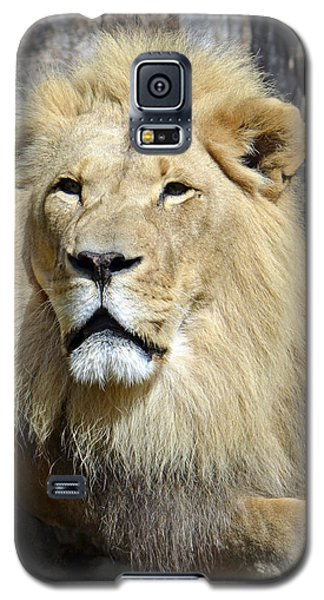 King Of Beasts Galaxy S5 Case