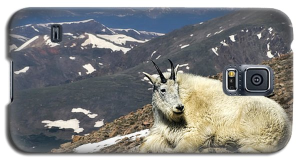 King Of Mt. Evans Galaxy S5 Case by Priscilla Burgers