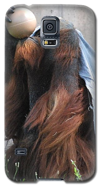 Galaxy S5 Case featuring the photograph King Of The Ball by Kathy Gibbons