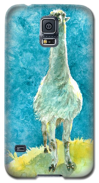 King Of The Hill Galaxy S5 Case