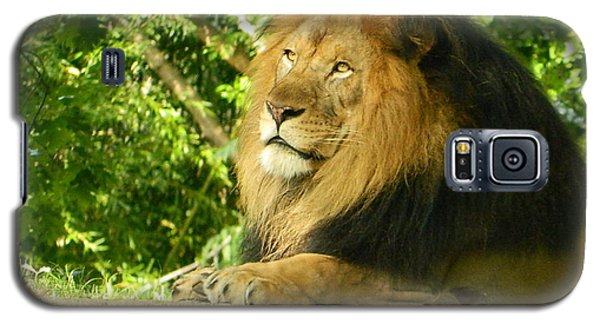 Galaxy S5 Case featuring the photograph King Of The Jungle by Emmy Marie Vickers