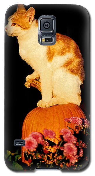 King Of The Pumpkin Galaxy S5 Case