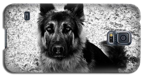 King Shepherd Dog - Monochrome  Galaxy S5 Case