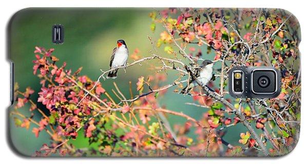 Kingbird Pair Galaxy S5 Case