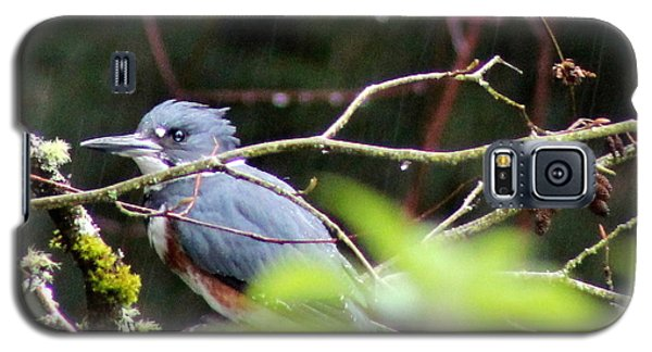 Galaxy S5 Case featuring the photograph Kingfisher In The Rain by Debra Kaye McKrill