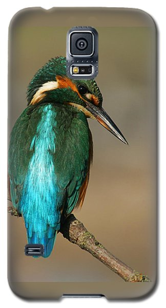 Kingfisher1 Galaxy S5 Case