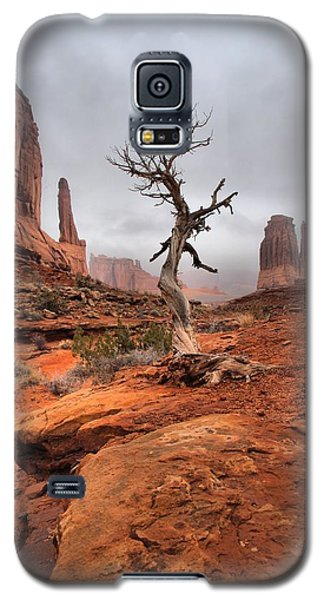 King's Tree Galaxy S5 Case